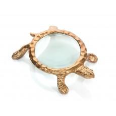 Turtle Magnifying Glass II