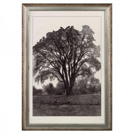 Tree in Landscape II
