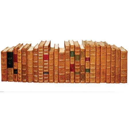 Tan Leather Books, Set Of 24
